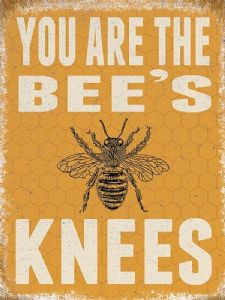 You Are The Bee's Knees metal sign  200mm x 150mm (og)